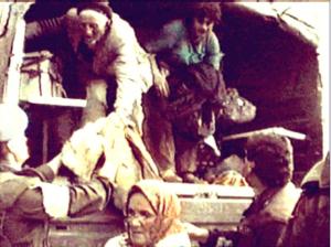 Slika koja je obišla svijet i pokazala svu tragediju Bosnjaka Ljutočke doline. Alija Bašić silazi sa kamiona UN-a. Kao i 1941. godine i ovaj put napušta Ljutočku dolinu i postaje izbjeglica.
